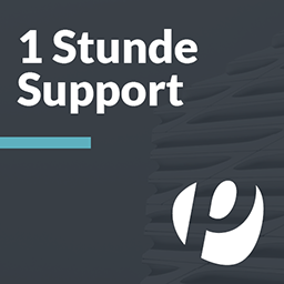 1 Stunde Support - incubado Services GmbH