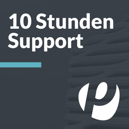 10 Stunden Support - incubado
