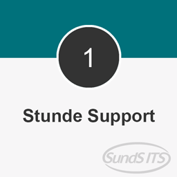 1 Stunde SundS ITS Support (30er Takt)