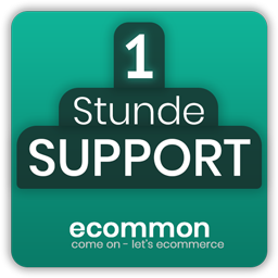 1 Stunde Ecommon Support