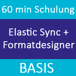 Elastic Sync Basic Training