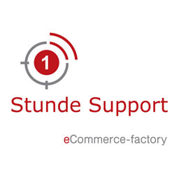 1 Stunde eCommerce Factory Support